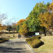 兵庫県立一庫公園は子供におすすめスポット。アクセスや駐車場は?