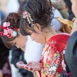 PAK85_seijinsikikeitai20140113500