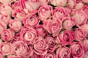 花束の保存方法や長持ちさせるには?渡すまでの前日保存はどうする?