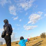 凧揚げの飛ばし方のコツは?子供とゲイラカイトを飛ばしてみた感想!