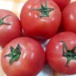 トマトの旬と栄養とは?おいしいトマトの見分け方は?